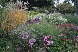 Herbstgarten Lovely