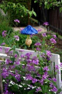 Die Vögel werden auch jetzt noch gefüttert und laben sich am Meisenknödel. Silberblatt (Lunaria) schmiegt sich an die Bank