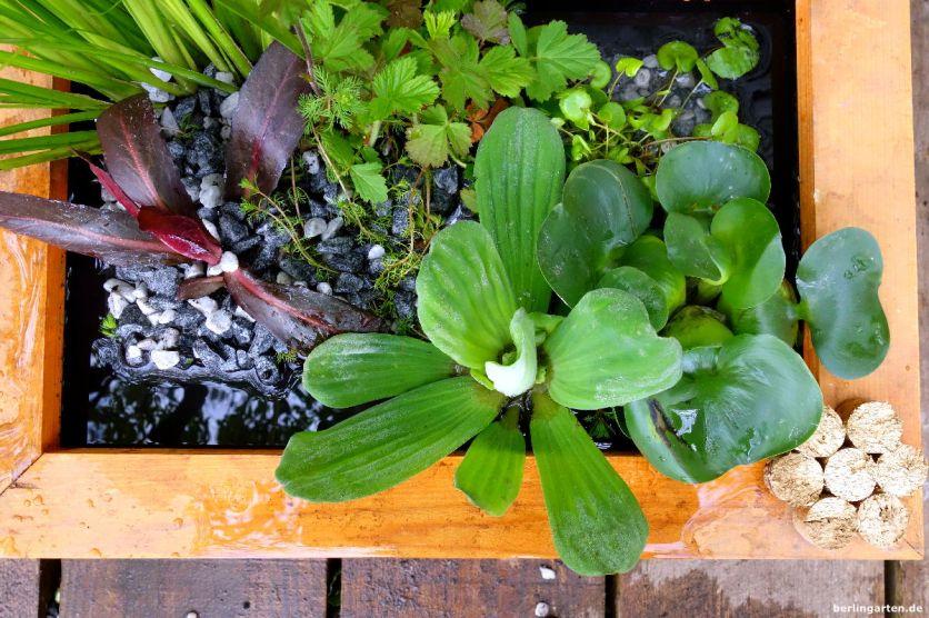 Mini-Teich für Terrasse