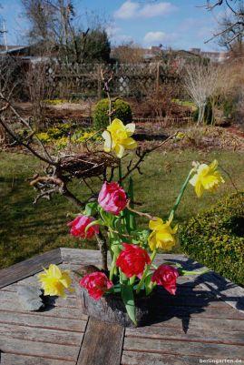 Narzissen Tulpen