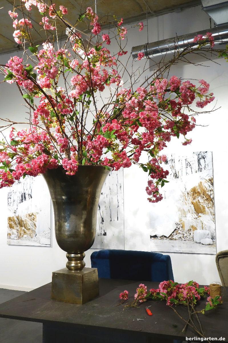 Pokale Blütensträucher