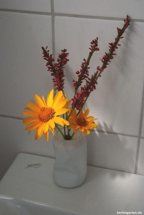 Sommer mit Sonnenblume und Knöterich