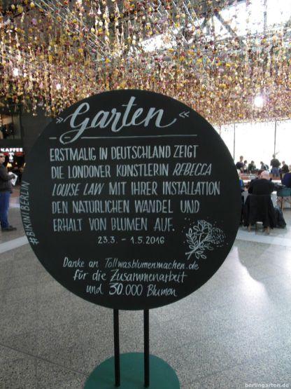 Sponsor der Aktion ist tollwasblumenmachen.de