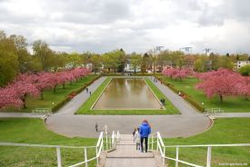 Symmetrie in der Gartengestaltung am Karpfenbecken