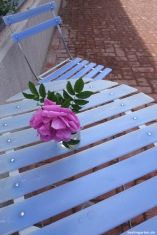 Tisch Rose