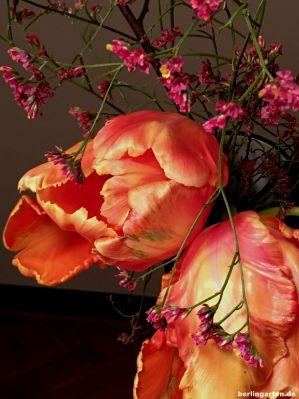 Tulpen mit Statice