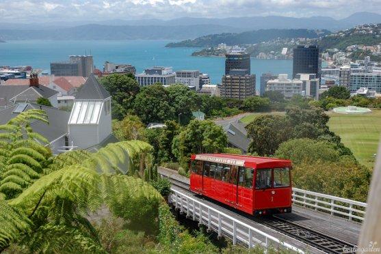 Mit dem Cable Car geht es in der Hauptstadt Wellington hoch zum Botanischen Garten