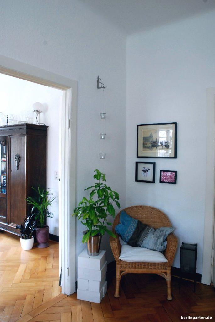 Zimmerpflanzen für den Schatten bzw. Plätze weit ab vom Fenster