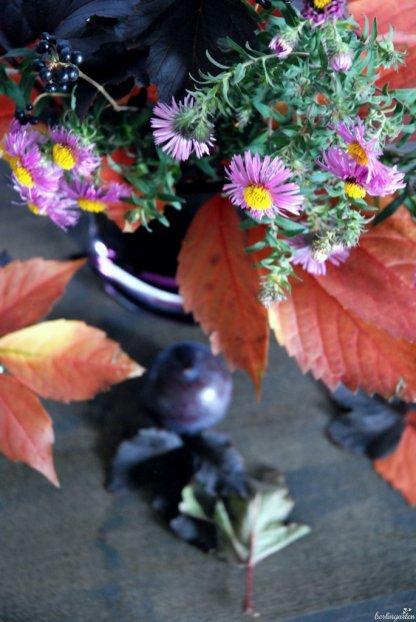 Astern, Perückenstrauch, Wein und Liguster: pure Herbstfarben