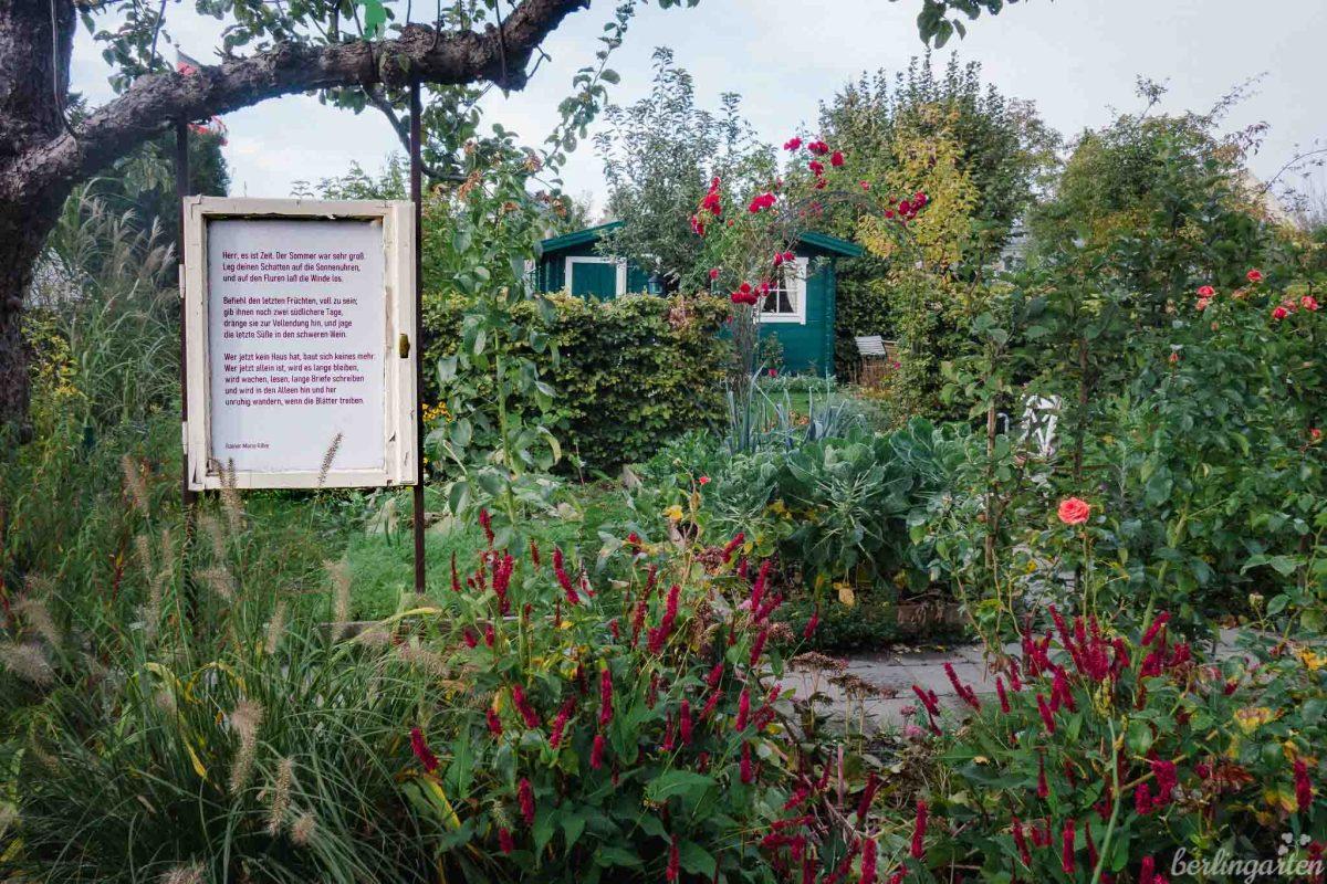 Gartengedicht In Alexandras Garten