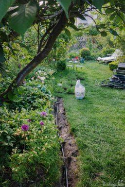 Kanäle durch den Garten