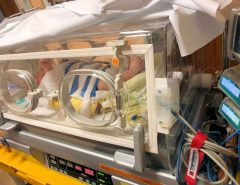 Transportinkubator wegen Neugeboreneninfektion