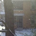 glittering powdery snow