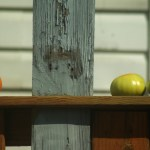 tomatoes on deck rail