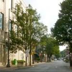 photo of main street in carnegie