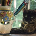 tortoiseshell cat with paintbrushes