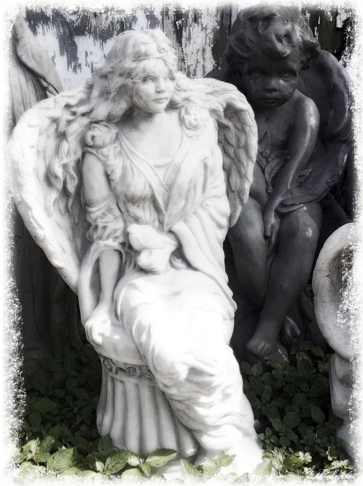 Bored Juvenile Angels