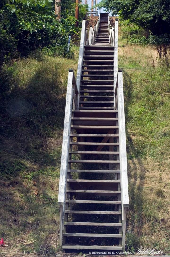 City Steps
