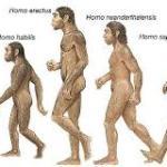 İlk insan türlerinin ortaya çıkışı