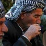 Çareseriya Doza Kurd Çi ye? – Mervan Serhildan