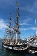 Pilgrim - Festival of Sail