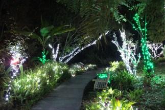 Garden of Lights - Romantic Bench