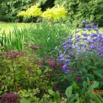 garden at cerdyn villa, floral borders