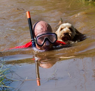 one Snorkeller and his trusty companion
