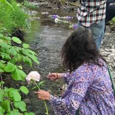 floating flowers down a river in memory of a loss