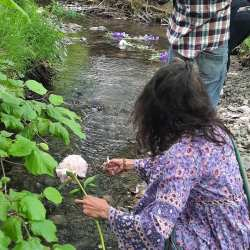 memorial, life celebration. Floating Flowers down the river in memory of a special person