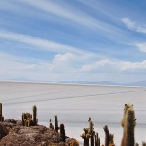 Isla Incahuasi, Salar d'Uyuni, Bolivie