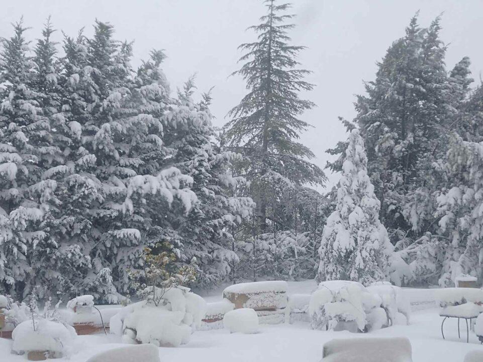 Nieve Los Berrocales