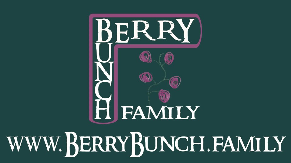 BerryBunch.family Splash with Website