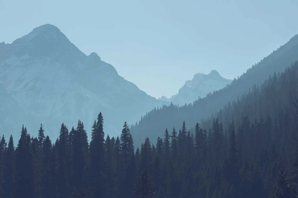 Mountains and trees, blue