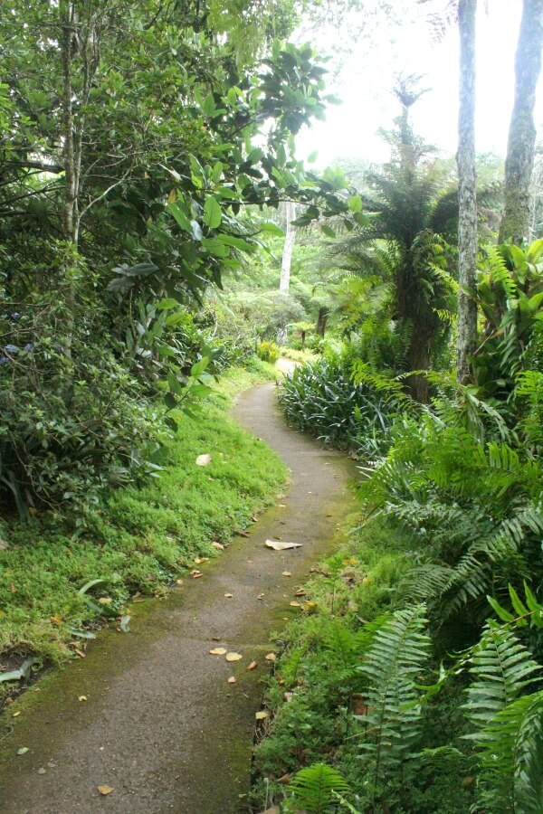 Makaranga Garden Lodge & Enchanted Gardens. South African travel adventures. Coffee Shop Desserts. Kloof, Durban | berrysweetlife.com