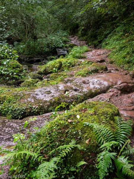 Randonnée Pyrénées GR 10