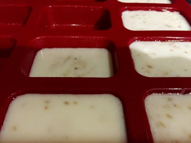 Homemade Coconut Oatmeal Soap 5