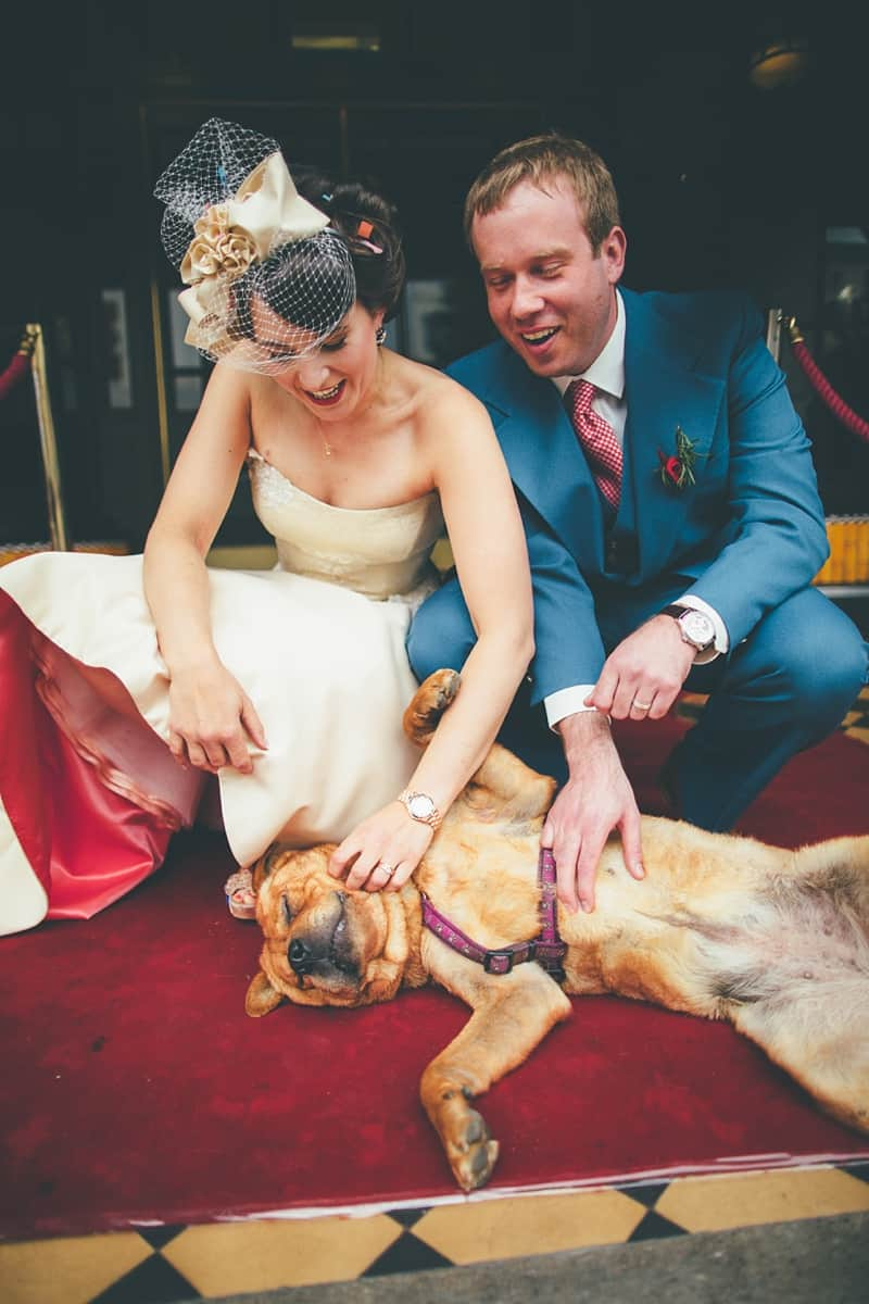 Why you should have your pets at weddings...
