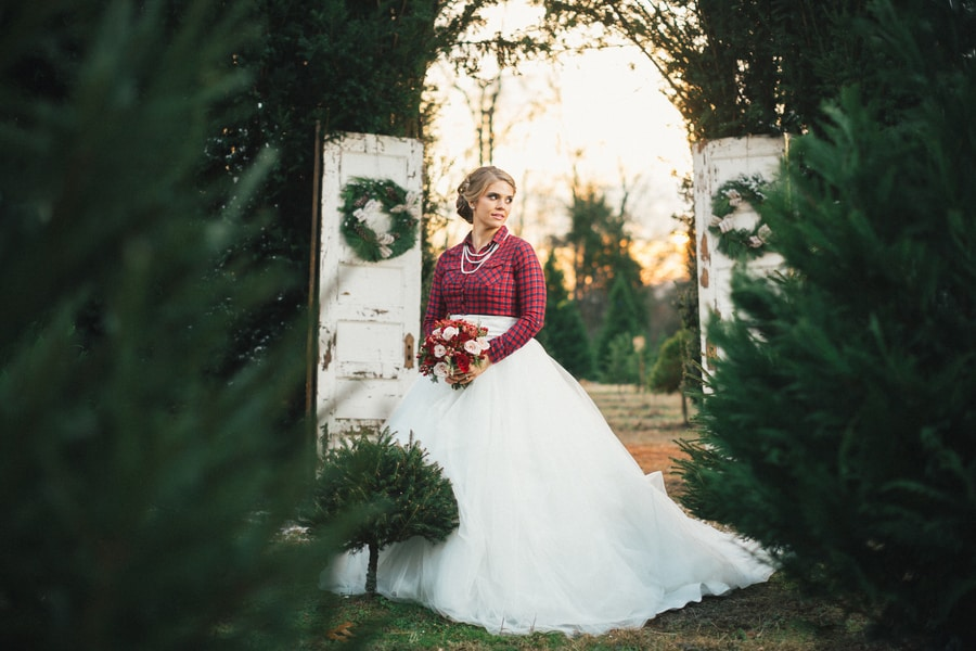 Festive Wedding Inspiration on a Christmas Tree Farm 11