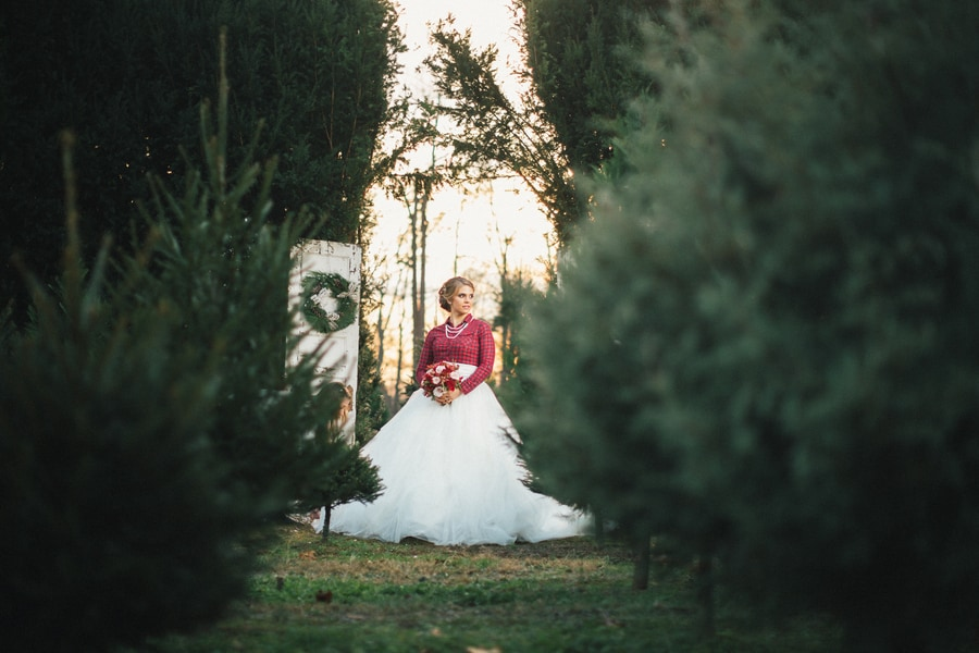 Festive Wedding Inspiration on a Christmas Tree Farm 12