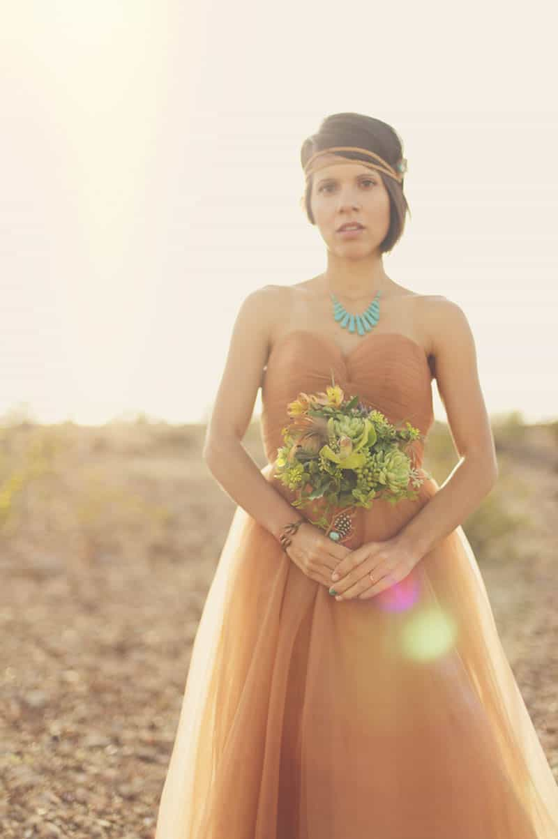 COUNTRY & WESTERN COWBOY & INDIAN ELOPEMENT (2)