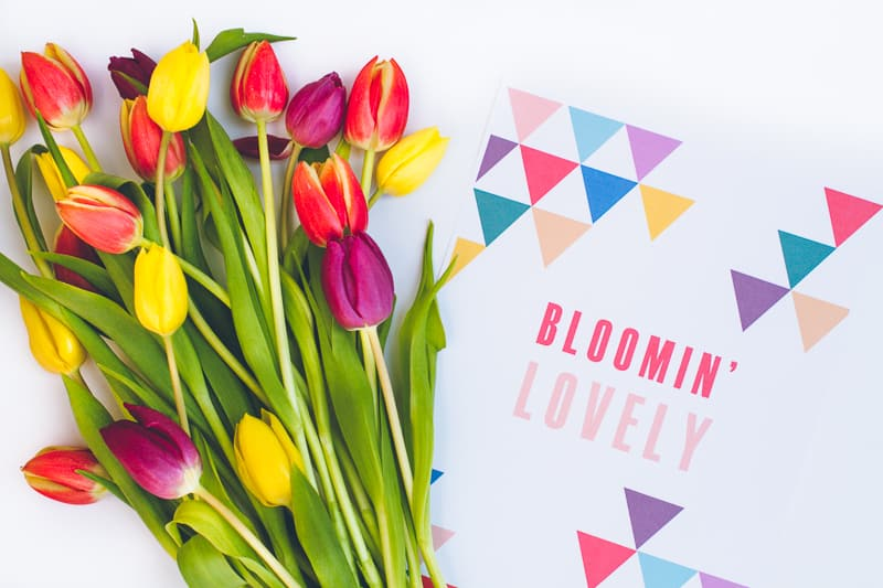 Free Printable Flower Wrapping Bloomin Lovely Wrap Geometric Tulips_-2