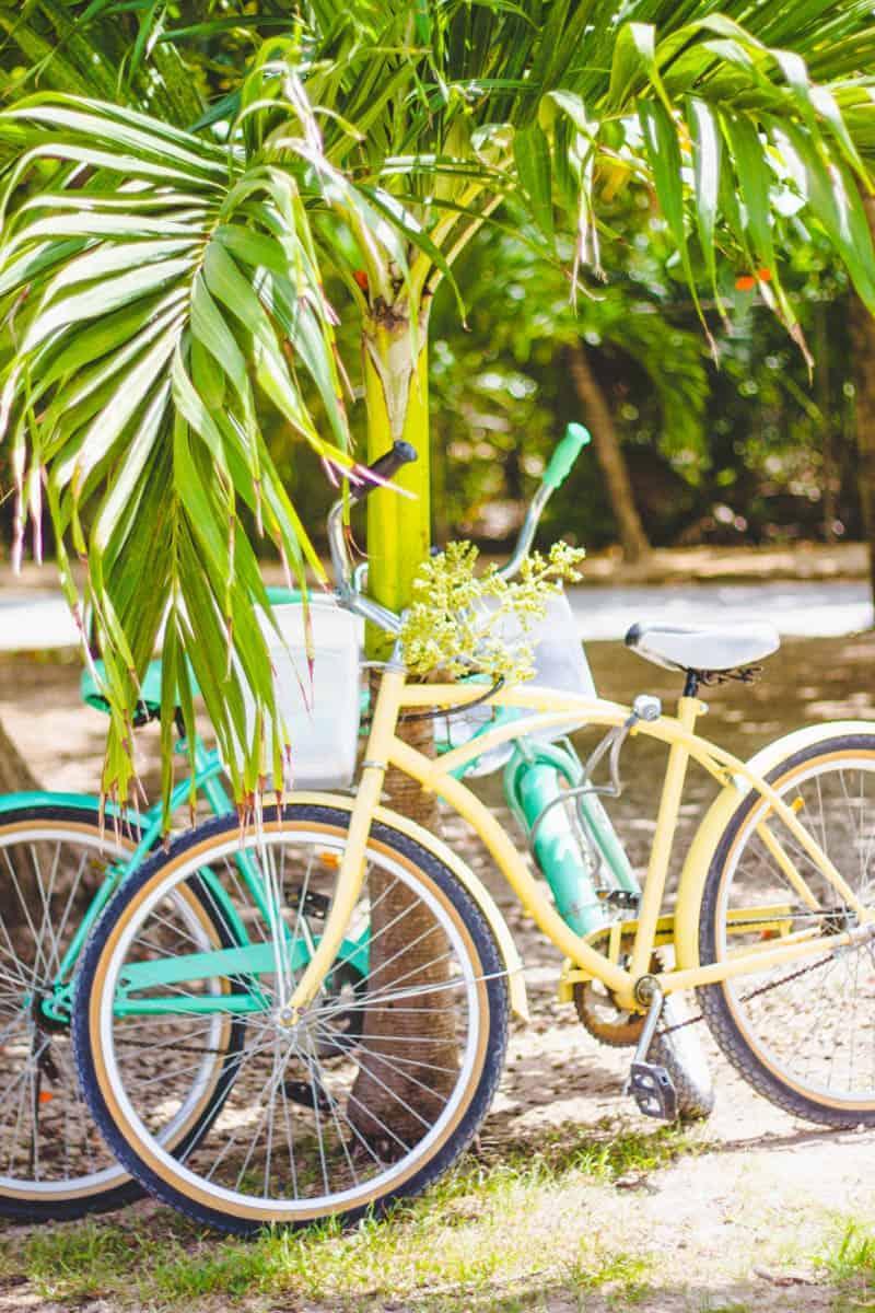 Mexico Honeymoon Travel Guide Playa Del Carmen 2015 (110)