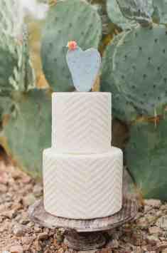 Cactus Cake Topper 1
