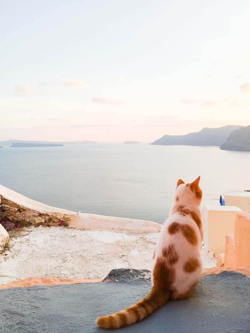 Santorini Oia Travel Guide Reccomendations Honeymoon Colourful Place Greece_-112
