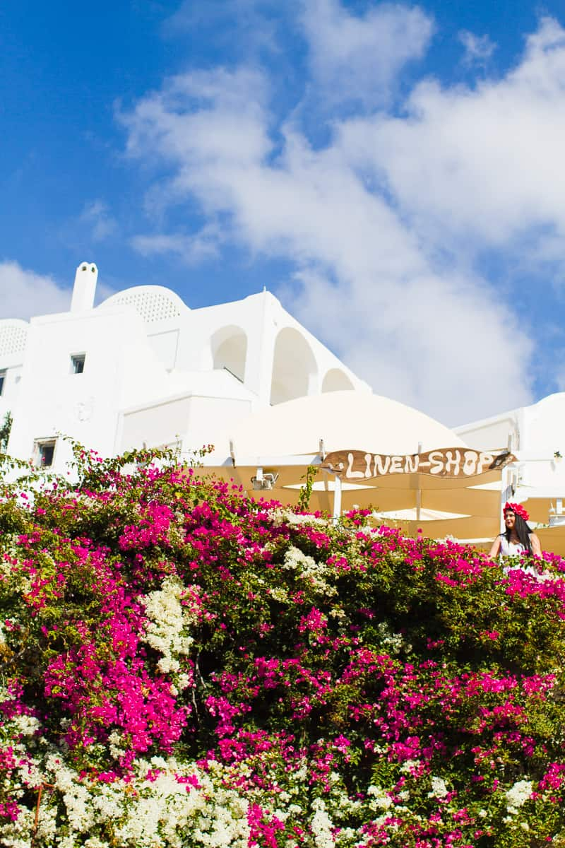 Santorini Oia Travel Guide Reccomendations Honeymoon Colourful Place Greece_-65