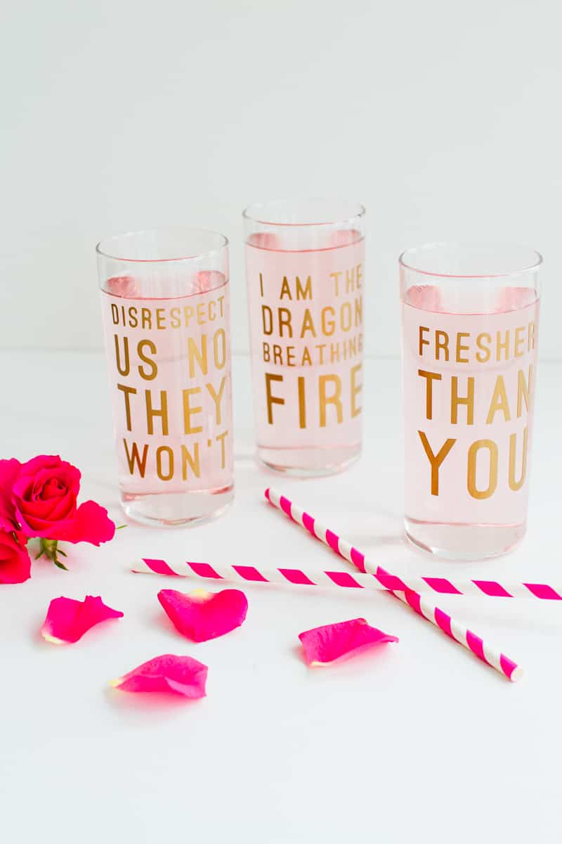 Beyonce Lemonade Lyric Quotes Glasses Cocktails Drinks Hen Party Bachelorette Song Fun Girl Power Queen B DIY Cricut Tutorial Window Cling-4