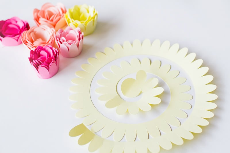 DIY FLORAL FLOWER CAKE TOPPER WITH CARD AND CRICUT