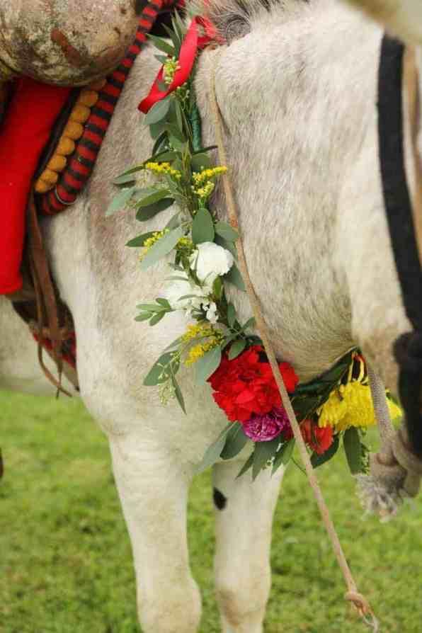 colorful-vibrant-destination-wedding-in-mexico-22