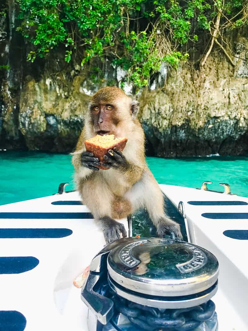 Phuket Thailand Travel Guide What to do Phi Phi where to stay food eating town honeymoon blogger-59